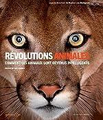 Révolutions animales - Comment les animaux sont devenus intelligents de Karine Lou Matignon