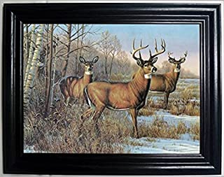 4 DEER 3D FRAMED Wall Art----Lenticular Technology Causes The Artwork To Have Depth and Move-HOLOGRAM Style Images-HOLOGRAPHIC Optical Illusions By THOSE FLIPPING PICTURES