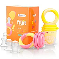NatureBond Baby Food Feeder/Fruit Feeder Pacifier Review