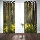 Musesh 52X84 Inch Curtains 2 Panels, Curtain Panels Bay Window Curtains Panel Blackout Curtains Large Window Curtains Magic Light in Dark for Bedroom Living Room