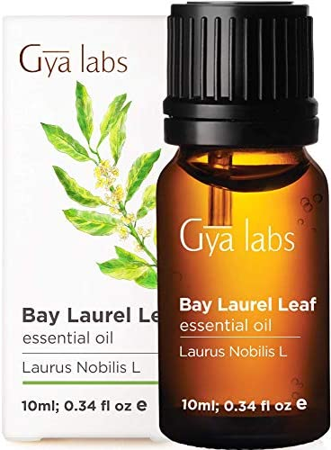 Gya Labs Rosemary Essential Oil for Hair Growth, Skin Care, Focus - Topical for Thin Hair, Oily Skin - Diffuse for Sinus, Congestion - 100 Pure Therapeutic Grade Rosemary Oil for Aromatherapy - 10ml