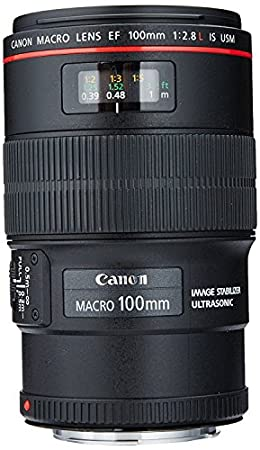 Canon EF 100mm F/2.8L IS