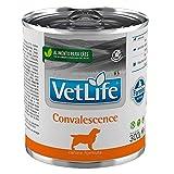 Farmina Vet Life Canine Convalescence 300 gr