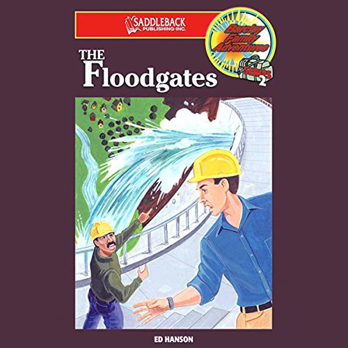 The Floodgates audiobook cover art