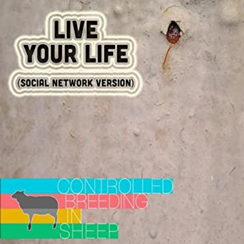 Live Your Life (Social Network Version)