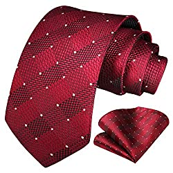 We focus on tie many years, good quality interlining makes our ties heavy weighted and elastic, which are easily designed for a perfect knot. Suitable for most occasions: Business, Party, Dating, ect. The tie is part of our best selling line of neckt...