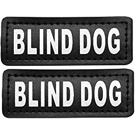 Service Dog in Training Patches, Hook Patches for Service Dog Vest – Service Dog, Emotional Support, in Training, Service Dog in Training, Therapy Dog in Training Patch