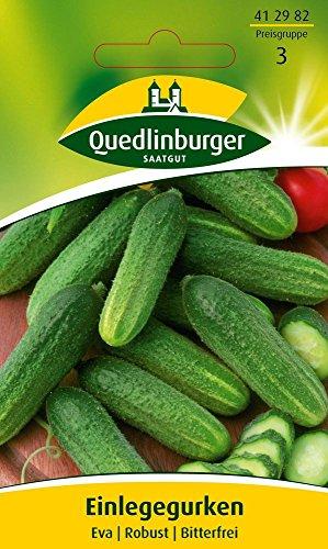 Gurkensamen - Einlegegurke Eva von Quedlinburger Saatgut