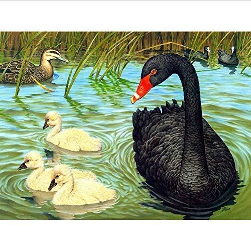 DIY Pintura al óleo Big Black Duck DIY Painting by Numbers 24 Color Pigment Brush Painting Art Pintado a mano Creativo Digital Pintura al óleo Pintura por números Bricolaje