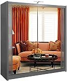 Muebles de dormitorio de la lámpara LED de gran espacio de almacenamiento con dos puertas correderas armario doble corredera de armario,Grey-250cm