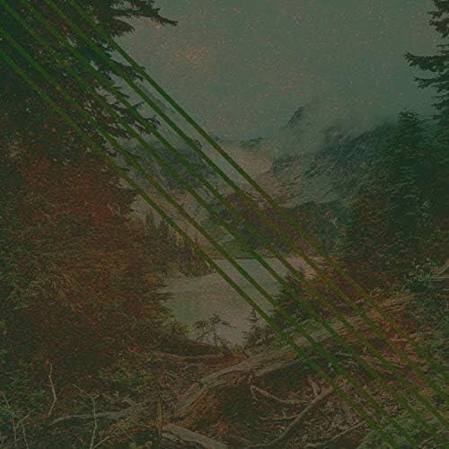 Aloe Cures & Auburn Mist