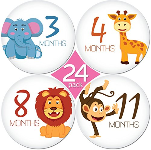 KiddosArt 24 Pack of 4 Baby Monthly Stickers 1 Happy Animal Sticker Per Month of Your Babys First Year Growth and Holidays. Month Sticker for Baby, Boy or Girl. Milestone Onesie Stickers