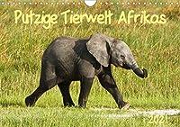 Putzige Tierwelt Afrikas (Wandkalender 2021 DIN A4 quer): Vom Neugeborenen bis zum Teenager - vielfaeltige Jugend, in der afrikanischen Wildnis aufwachsend (Monatskalender, 14 Seiten )