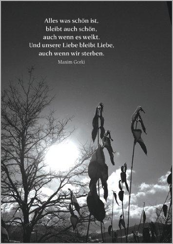 Helga Bühler 5X Bewegende Trauerkarte mit einem Maxim Gorki Zitat als Beileidsspruch • Beileidskarte Kondolenzkarte Trauer Beileid Grußkarte im Todesfall für das Trauerhaus