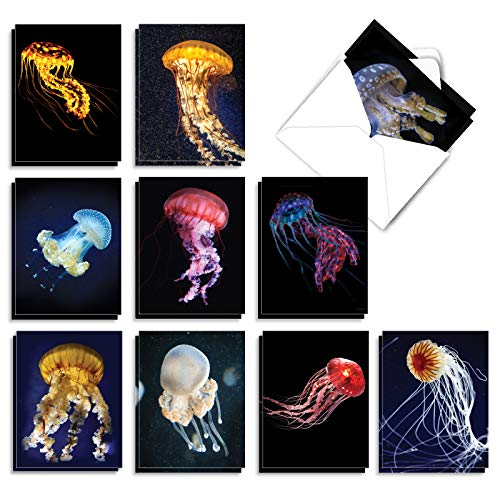 Glowing Jellies - 20 Incredible Jelly Fish Note Cards with Envelopes (4 x 5.12 Inch) - All Occasion Blank Greeting Cards - Majestic Ocean Marine Life Stationery (10 Designs, 2 Each) AM7181OCB-B2x10