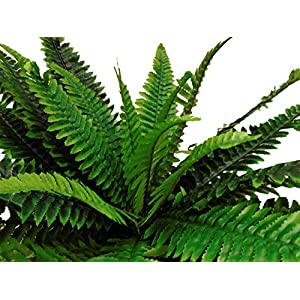 Boston Fern Bush 29″ Leaves Artificial Silk Plant Greenery 30 – 5601GN