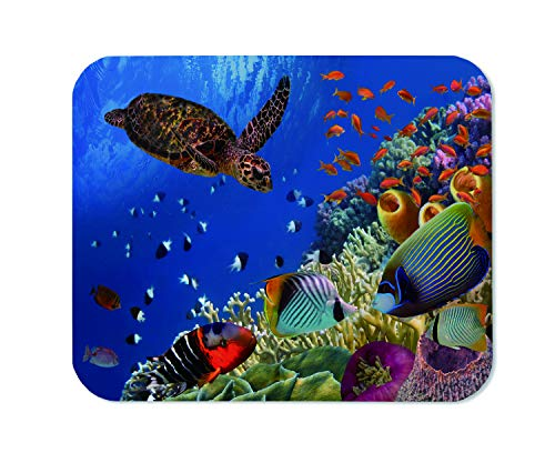 Yeuss Underwater Marine Animals Mouse Pad Rectangular Non-Slip Mousepad, Colorful Coral Reef with Many Fishes and Sea Turtle Red Sea Egypt Gaming Mouse Pads, Colorful,200mm x 240mm