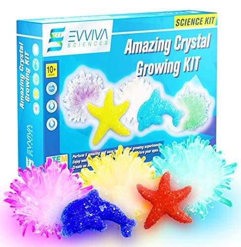 Evviva Sciences Crystal Growing Kit