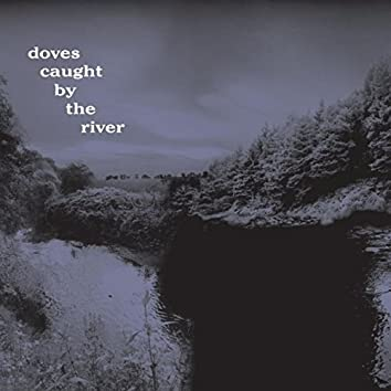 Caught By The River
