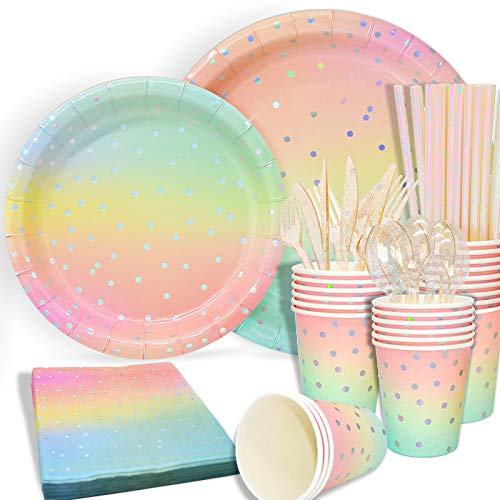 Sliver Dot Disposable Paper Party Plates Set 25 Dinner Plates 25 Dessert Plates 25 Cups 25 Napkins 25 Straws Dinnerware Set for Birthday Baby Shower Wedding Rainbow Party  Serves 25
