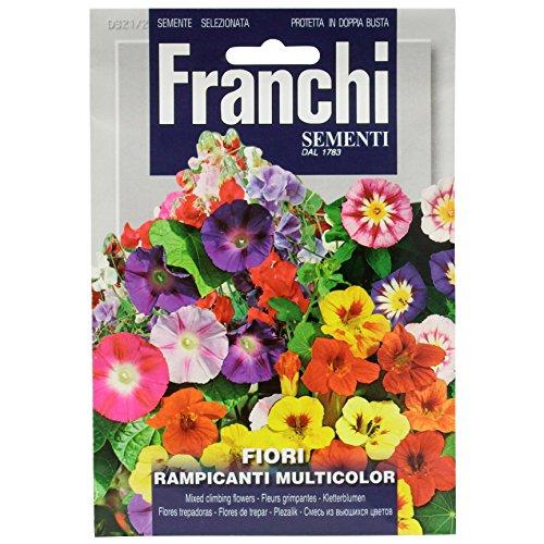 Seeds of Italy Franchi Mélange de Fleurs grimpantes annuelles