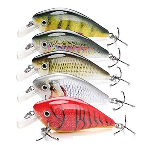 Bait Fish Crankbait for Bass Fishing - by Codaicen Fishing - Life-Like Bass Fishing Lures - Predatory Swimbait Fishing Lures - Catches Bass, Walleye, Pike (Multi-Set1) Great Fishing Gifts