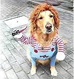 Vivi Bear Costume da Cane novità Cosplay Cosplay per Animali Domestici Vestiti per Animali Domestici Adatto a Cuccioli Grandi e Medi(S)