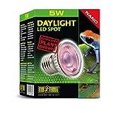 Exo Terra PT2342 Daylight LED Spot Nano 5W