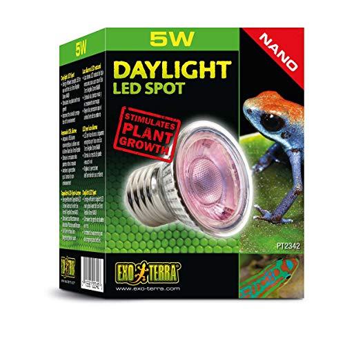 Exo Terra Daylight LED Spot NANO, LED Tageslichtlampe, für den Gebrauch im Exo Terra Reptile Dome Nano, 5W, Fassung E27