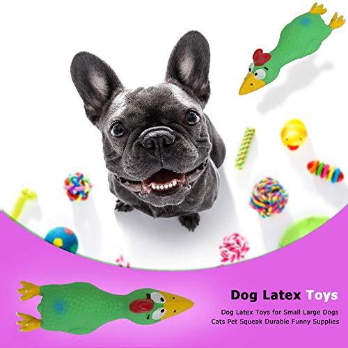 Slibrat Puppy Chew Tpy Hund Gummipuppe Gnawing Spielzeug Screeching Huhn Squeak Tierspielzeug (Grün)