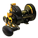 Penn Baitcast Reels Review and Comparison