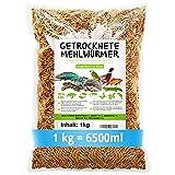 SHF-Natur - Gusanos de la harina secos, 1 kg (equivale a 6,5 litros), pienso de calidad superior, saludable y natural para peces, roedores, reptiles, tortugas y erizos