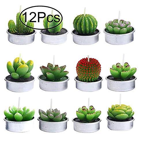 Yakiki 12 Velas aromáticas sin Humo de Cactus Velas de té, Lindo Verde Mini Plantas suculentas Velas para Fiesta de cumpleaños, Boda, SPA, decoración del hogar Regalo