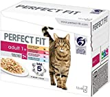 Perfect Fit Wet Cat Food - Advanced Nutrition for Adult Cats 1+, Mixed Selection in Sauce, 48 Pouches (48 x 85 g)