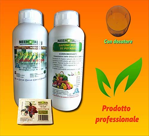 Argan Italia Olio di Neem SOLUBILE per Piante 1 lt + Sapone Molle di potassio corroborante 1 kg con dosatore