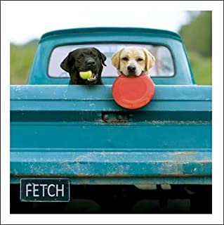 Lewie & Clark The Adventurers Loose Leashes Greeting Card Blank Inside
