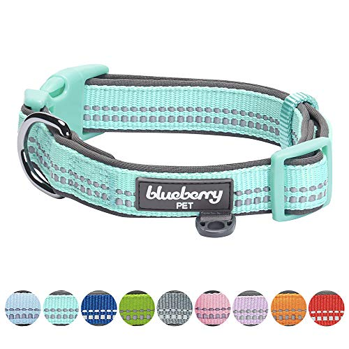 Blueberry Pet Soft & Safe 3M Reflective Dog Collar