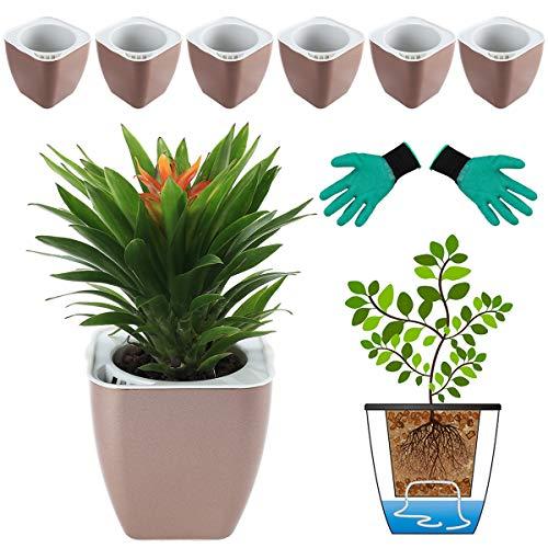 DeEFL 6 Packungen 10,4 cm kleine selbstbewässernde Pflanzgefäße Kunststoff selbstbewässernde Töpfe Wicking Blumentöpfe für Zimmerpflanzen, afrikanische Veilchen, Ozeanspinne, Orchidee, Champagner-Gold