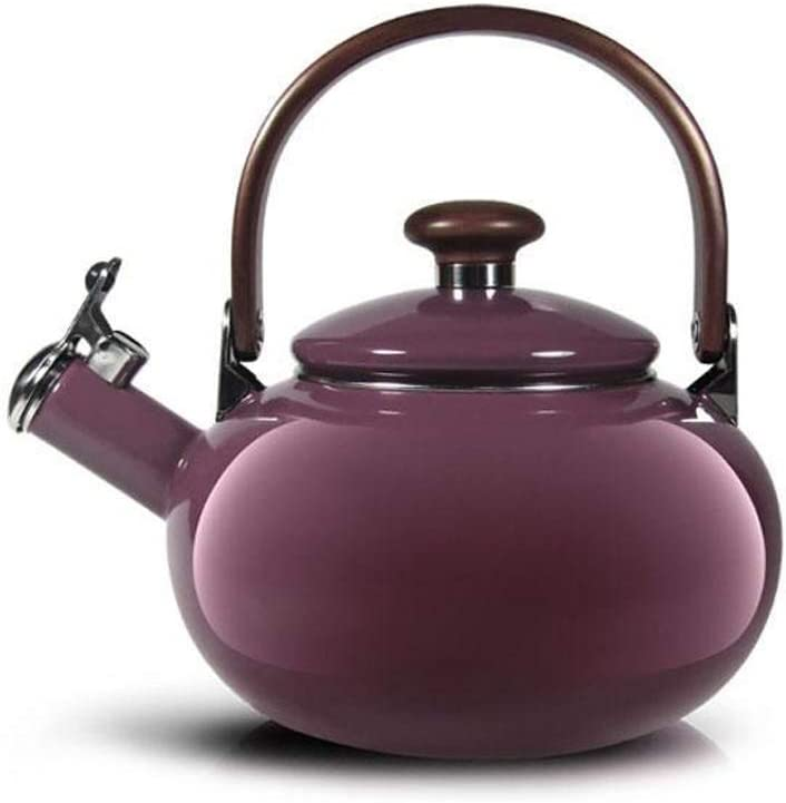 Enamel Great interest on Steel Whistling Tea Kettle Stove Top 2 for Fashion Quart Pur