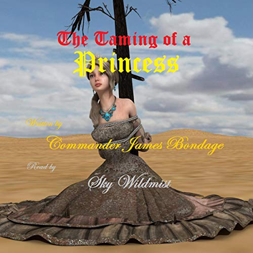 The Taming of a Princess audiobook cover art