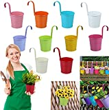 Ediesi, Macetas Decorativas de Colores, Colgantes, para Exterior, Macetero, Soporte Jardinería Balcon, Metálicas, para Plantas Pequeñas, 10 Piezas