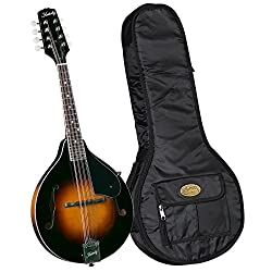20 Best Mandolin Reviews 2019 – Best Mandolin Brands - CMUSE