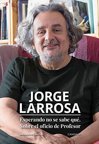 Esperando no se sabe qué. Sobre el oficio de profesor (Perfiles) (Spanish Edition)