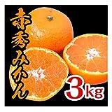 みかん 和歌山県産 赤秀みかん 完熟 送料無料 産地直送 甘い 選別済 (3kg)