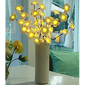 Sezrgiu 2 Pack Led Flower Branch Light Battery Operated Lighted Branch Artificial Frangipani Little Twig Power Brown 30 Inch 20 LED for Home Romantic Decoration (Frangipani Branch Light)