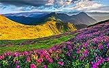 Xiutailtd Rompecabezas de rompecabezas de primavera montañas florales, rompecabezas de madera, rompecabezas de 1000 piezas para adultos y niños, juguetes (75 50 cm)
