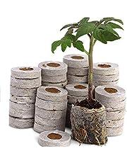 COIR GARDEN Coir Seed Germination kit, 4 cm x 4 cm x 1 cm, Pack of 20