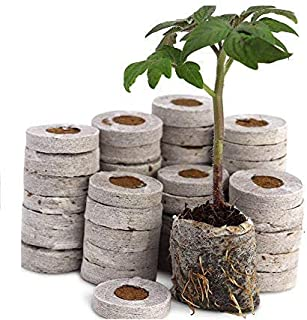 COIR GARDEN - Netted Coco Coins - Hydroponics Seed Germination kit - Coir Netted Coins - Pack of 20