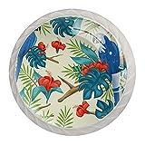Juego de 4 pomos de cristal para aparador, diseño de pájaros tropicales