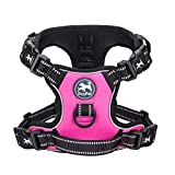 Best No Pull Dog Harnesses - PoyPet 2019 Upgraded No Pull Dog Harness Review